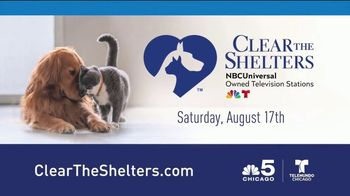 Clear the Shelters TV Spot, 'NBC 5: Fund the Shelters Challenge' - Thumbnail 9