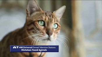 Clear the Shelters TV Spot, 'NBC 5: Fund the Shelters Challenge' - Thumbnail 2