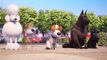 McDonald's Happy Meal TV Spot, 'The Secret Life of Pets 2: Waiting for You' Song by Richard Marx - Thumbnail 5