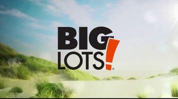 Big Lots TV Spot, 'Hallmark Channel: Home & Family: Summer Ready' - Thumbnail 7
