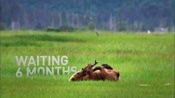 Alaska TV Spot, 'Waiting for You' - Thumbnail 5