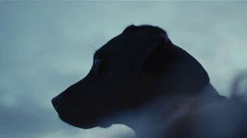 YETI Coolers TV Spot, 'Duck Hunting' - Thumbnail 1