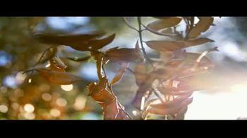 STIHL TV Spot, 'Batería AK' canción de Sacha James Collission [Spanish] - Thumbnail 1