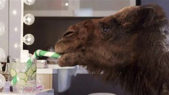 GEICO TV Spot, 'Meet the Best of GEICO Winner' Song by Alonzo Vasquez - 10567 commercial airings