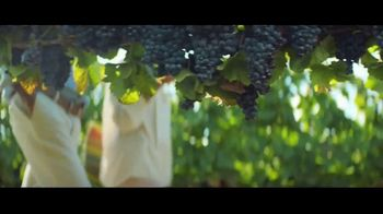 Brighthouse Financial Shield Annuities TV Spot, 'The Vineyard'