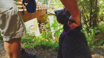 Visit Roseburg TV Spot, 'Hike' - Thumbnail 5