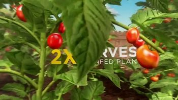 Miracle-Gro TV Spot, 'Discovery Channel: Enjoy the Grow' - Thumbnail 8