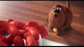 XFINITY xFi TV Spot, 'The Secret Life of Pets 2: Sausages'
