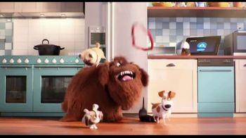 XFINITY xFi TV Spot, 'The Secret Life of Pets 2: Sausages' - Thumbnail 9