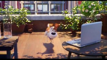 XFINITY X1 TV Spot, 'The Secret Life of Pets 2: Embrace the Mischief' Song by Flo Rida - Thumbnail 5