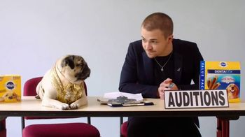 Pedigree TV Spot, '2019 CMT Music Awards: Hunter Hayes and Doug the Pug's DOG-tourage' - 9 commercial airings