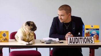 Pedigree TV Spot, '2019 CMT Music Awards: Hunter Hayes and Doug the Pug's DOG-tourage' - Thumbnail 8