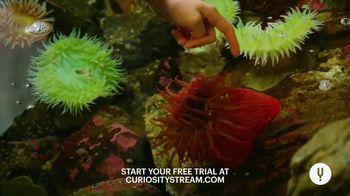 CuriosityStream TV Spot, 'For the Curious: Gaze' - Thumbnail 4
