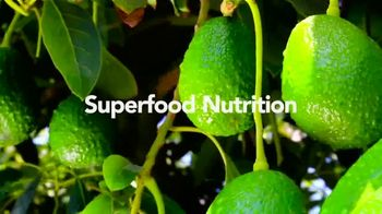Avocados From Peru TV Spot, \'Fruit of the Summer\'
