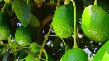 Avocados From Peru TV Spot, 'Good Fats & Great Flavor' Song by FitnessGlo - Thumbnail 1