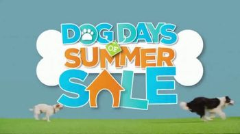 JCPenney Dog Days of Summer Sale TV Spot, 'Fetch Shorts and Towels' - Thumbnail 4