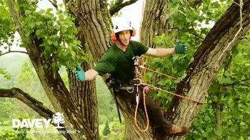 Davey Tree Expert Company TV Spot, 'Hiring' - Thumbnail 2