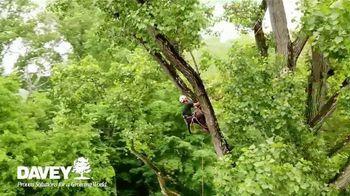 Davey Tree Expert Company TV Spot, 'Hiring' - Thumbnail 4
