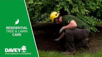 Davey Tree Expert Company TV Spot, 'Hiring' - Thumbnail 5