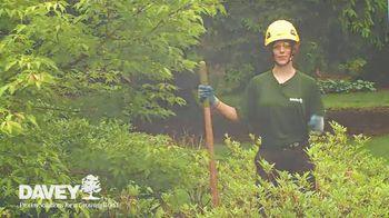 Davey Tree Expert Company TV Spot, 'Hiring' - Thumbnail 9