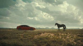 2019 Kia Stinger GTS TV Spot, 'Outlaw Horses' [T1]
