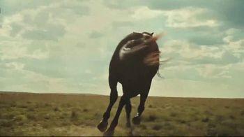 2019 Kia Stinger GTS TV Spot, 'Outlaw Horses' [T1] - Thumbnail 7