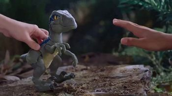 Jurassic World Dino Rivals Primal Pal Blue TV Spot, 'Become the Ultimate Raptor Trainer'