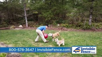 Invisible Fence TV Spot, 'Sound Snapshot: Training Program' - Thumbnail 9