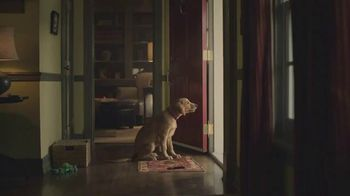 Subaru TV Spot, 'Dog Tested: Scram' [T1] - Thumbnail 1