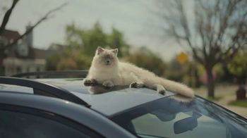 Subaru TV Spot, 'Dog Tested: Scram' [T1] - Thumbnail 4