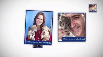Clear the Shelters TV Spot, 'NBC Universal: desocupar los albergues' [Spanish]