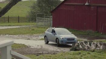 Subaru A Lot to Love Event TV Spot, 'Old Friends' [T2] - Thumbnail 7