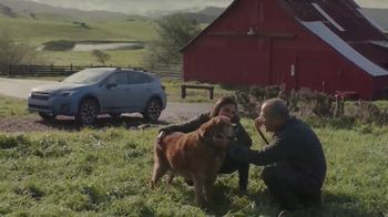 Subaru A Lot to Love Event TV Spot, 'Old Friends' [T2]