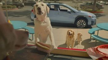 Subaru Crosstrek TV Spot, 'Dog Tested: Lunch Stop' [T1]