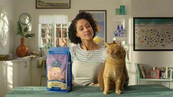 Blue Buffalo TV Spot, 'Blue Buffalo vs. Meow Mix: Kitty Cravings' - Thumbnail 1