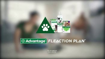 Bayer Advantage Fleaction Plan TV Spot, 'Too Soon'