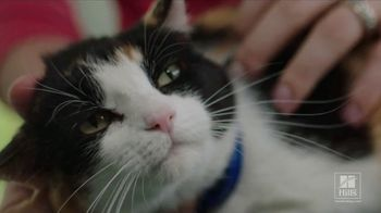 Hill's Pet Nutrition TV Spot, 'It Can Start'