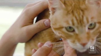 Hill's Pet Nutrition TV Spot, 'It Can Start' - Thumbnail 4