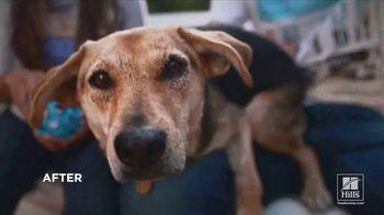 Hill's Pet Nutrition TV Spot, 'It Can Start' - Thumbnail 6