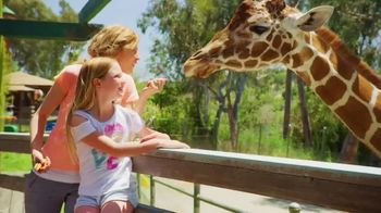 Six Flags Discovery Kingdom TV Spot, 'Bigger, Faster, Wilder' - Thumbnail 7