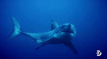 Esurance TV Spot, 'Discovery Channel Promo: Shark Week'