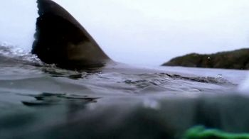 Esurance TV Spot, 'Discovery Channel Promo: Shark Week' - Thumbnail 1