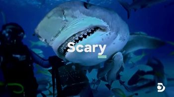 Esurance TV Spot, 'Discovery Channel Promo: Shark Week' - Thumbnail 4
