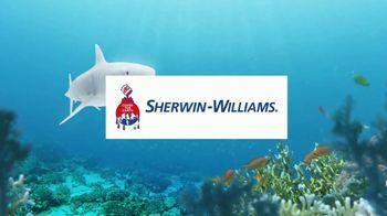 Sherwin-Williams TV Spot, 'Shark Week: Color Inspiration' - Thumbnail 10