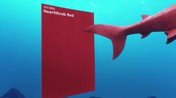 Sherwin-Williams TV Spot, 'Shark Week: Color Inspiration' - Thumbnail 4