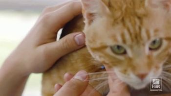 Hill's Pet Nutrition TV Spot, 'Una mirada' [Spanish] - Thumbnail 4