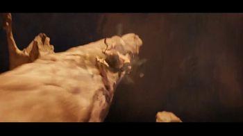 Netflix TV Spot, 'The Dark Crystal: Age of Resistance' - Thumbnail 6