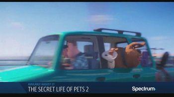 Spectrum On Demand TV Spot, 'The Secret Life of Pets 2 & Men in Black: International' - Thumbnail 2