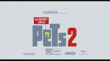 Spectrum On Demand TV Spot, 'The Secret Life of Pets 2 & Men in Black: International' - Thumbnail 4