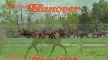 Hanover Shoe Farms TV Spot, '2019 Yearling'
